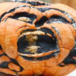 Decomposing Pumpkin Activity