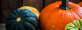 Colorful pumpkins to use as inspiration when writing poems about pumpkins