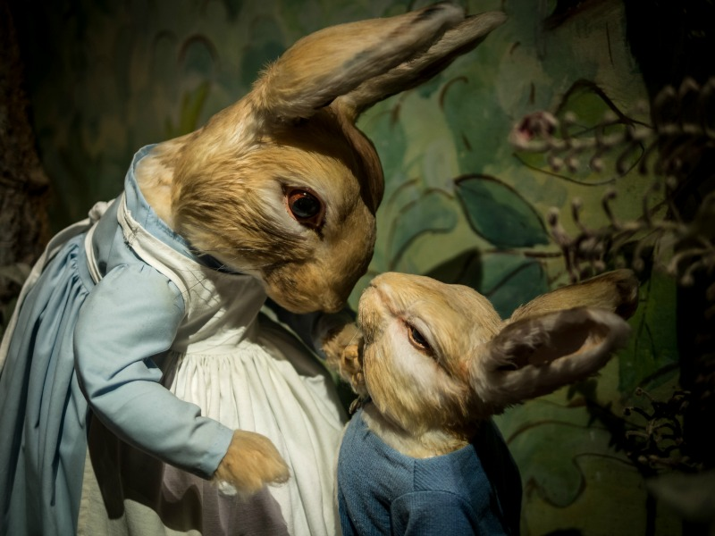 The world of Beatrix Potter for kids
