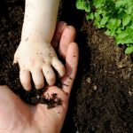 Composting For Kids – A Fun Learning Activity For Your Children