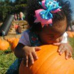 Creative Pumpkin Activities For Preschoolers