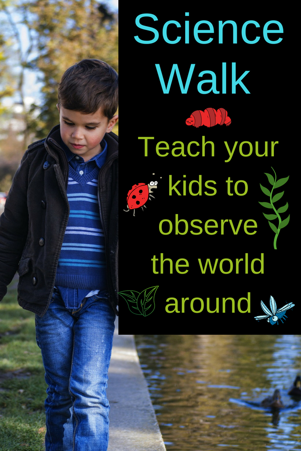 Discover science in nature for kids with a walk in your backyard or at the park. Children will have fun learning how nature works: get some ideas here.